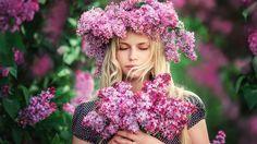 Любимый ее цвет был Лиловый.... Обсуждение на LiveInternet - Российский Сервис Онлайн-Дневников