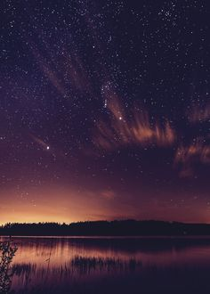 "mstrkrftz: ""   One Starry Night   Kev Pearson """