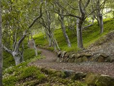 http://www.houzz.com/photos/545427/Blasen-Gardens-modern-landscape-san-francisco