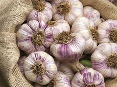 Garlic a day will keep you looking fresh and healthy