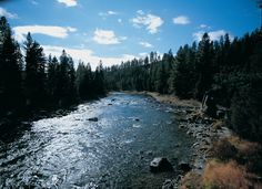 10 miles of river front property on the legendary Blackfoot River runs through Paws Up