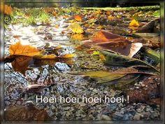 Liedje Herfstbladeren - YouTube Liedje: Hoei, hoei, hoei, hoei. Vijf herfstblaadjes hangen aan een tak.