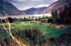 Panamik   101 things to do in Leh Ladakh