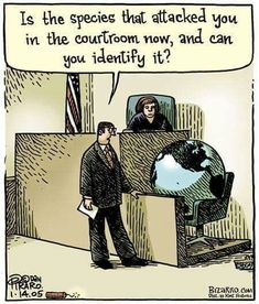 """""""Is the species that attacked you in the courtroom? Save Our Earth, Save The Planet, Change The World, In This World, Science Humor, Environmental Issues, Social Issues, Global Warming, Worlds Of Fun"""