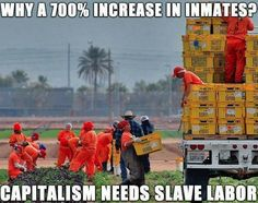 2MIL imprisoned: fueled by profit & greed of prison industry