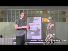 Disfunciónes de Vesícula Biliar. Consecuencias, causas y tratamiento.