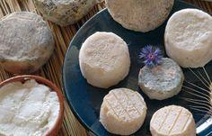 Les Fromages du Languedoc Roussillon - France