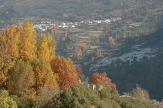Autumn in La Alpjuarra http://www.spain-holiday.com