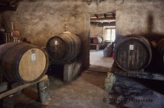 Italy Photography, Tuscany Print, Montechiaro, Old Durmast Wine Barrels, Cellar, Travel, Italy Decor, Tuscany Wall Decor di Molo7Photography su Etsy
