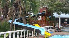 Tree house escape slide Wendy House, Jungle Gym, Park, Fun, Parks, Hilarious