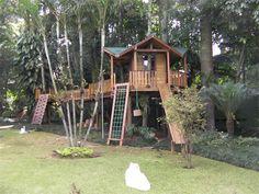 Projetos Infantis   Casa na Árvore