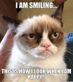 Grumpy Cat Smiling   Grumpy Cat - I AM SMILING…, THIS IS HOW I LOOK WHEN I AM HAPPY!
