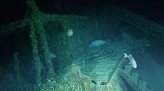A video frame grab of the stern cabin of the SS Bluefields. Bluefields is very…