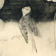 "Svetlana Rumak, ""Secret Herbarium Of Leo"", page 16, watercolour on paper, 40x30 cm, 2015 irumak@mail.ru www.rumak.net"
