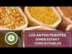Descubre qué es eso de los antinutrientes, dónde están y cómo evitarlos ;-)