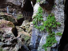 Capricorn Caves, Qld