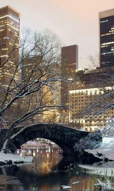 Snow in Central Park, NYC