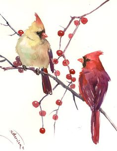 Male and Female Cardinal, original watercolor painting, 14 X 11 in by ORIGINALONLY on Etsy