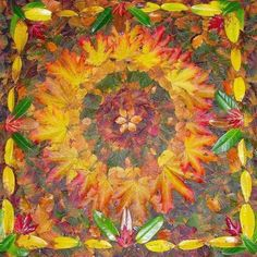 mandala met herfstbladeren