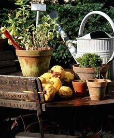garden table....love time in the garden
