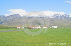 Summer landscape, ranch in Iceland