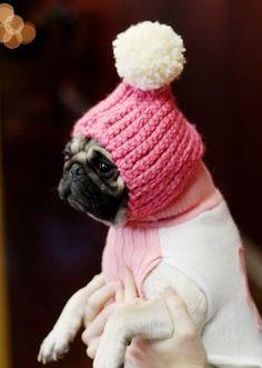 DIY pom pom snow hat for doggies