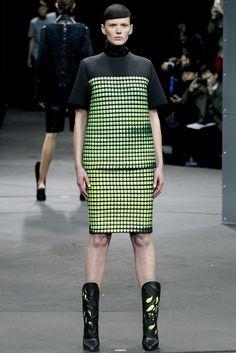 Alexander Wang Fall 2014 Ready-to-Wear Fashion Show - Anne Vyalitsyna