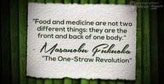 Permaculture Ideas: Masanobu Fukuoka on Food and Medicine Sustainable Farming, Organic Farming, Sustainable Living, Organic Gardening, One Straw Revolution, Masanobu Fukuoka, Permaculture, Medicine, Zoology