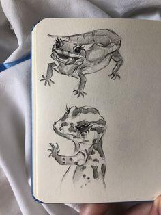 Indie Drawings, Pencil Art Drawings, Cool Art Drawings, Art Drawings Sketches, Animal Drawings, Drawing Animals, Drawing Ideas, Arte Sketchbook, Funky Art
