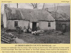 An Irish farm in County Donegal Irish Immigrants, Images Of Ireland, New Zealand Houses, Erin Go Bragh, History Photos, History Facts, Irish Cottage, Local History, Family History