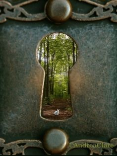 Enter the keyhole and be transported to the Fairy Kingdom. #fairygarden*****YOU'LL LOVE OUR OTHER UNIQUE BOARDS, FOLLOW US AT www.pinterest.com/earthwormtec and www.facebook.com/earthwormtec