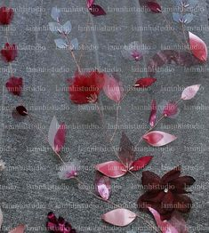 Wedding Veil, Ribbon, Flowers, Tape, Treadmills, Royal Icing Flowers, Florals, Flower, Bloemen
