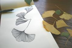 One of my beautiful daughter's drawings..... gingko leaves are a family favourite!