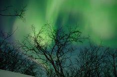 northern-lights-budget