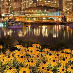 Vancouver Canada, this is a good city for 18 year old Americans to party in :)