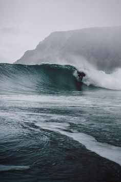 /// Just trying to fit in - Lofoten Islands, surfing Norway Lofoten, Surfing Tips, Water Surfing, Ocean Waves, Ocean Beach, Scenery, Around The Worlds, Journey, Tours