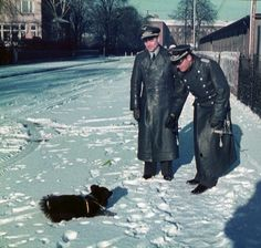 German Wehrmacht officers play with a pup while stationed in the Eastern Front.