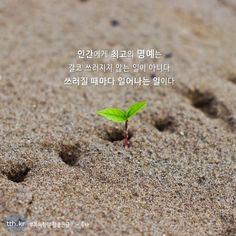 인간에게 최고의 명예는 결코 쓰러지지 않는 일이 아니다. 쓰러질 때마다 일어나는 일이다.  - 공자 #톡톡힐링 Wise Quotes, Famous Quotes, Korean Writing, Powerful Words, Messages, Education, Landscape, Feelings, Sayings