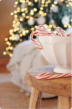 A Rosy Note: Christmas in the Living Room