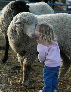 Sweetness and Innocence that only a child could give! ♥    *Repinned from:  Animals/Animal Humor(no cats/no birds)   board.*