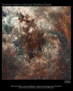 Tarantula Nebula in the Large Magellanic Cloud...