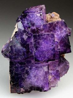 A very pretty specimen of Fluorite from El Tule Mine, Mexico. The Fluorite is a transparent bright purple with white centres visible through the crystals. The Fluorite coats a light sandy matrix with minor Calcite. Purple Love, All Things Purple, Bright Purple, Minerals And Gemstones, Rocks And Minerals, 6 Chakra, Beautiful Rocks, Beautiful Artwork, Rocks And Gems
