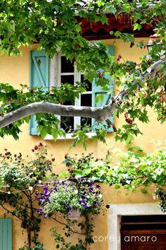 Un jour d'été en Provence, couleurs, fleurs et bon temps se dégagent de cette photo. #provence #été