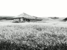 An old abandoned homestead I found near the Cypress Hills, SK winery. copyright N.Jacquin 2012  www.nikkisportraits.com