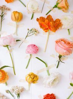 アート|takara flower life-フラワーライフ-
