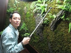 Greenkeeper: Kokemori director Norihiro Kotake tends to an indoor display of moss that helps purify the air. Moss Wall Art, Moss Art, Cy Twombly Art, Growing Moss, Green Garden, Eco Green, Kermit The Frog, Exhibition Space, Get Outside