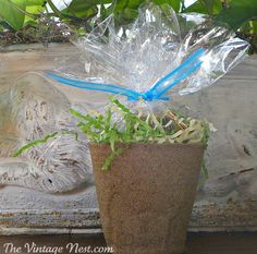 Sweet and easy to make Easter Spring favors.  Fill peat grow pots with jelly beans or other sweet treats.