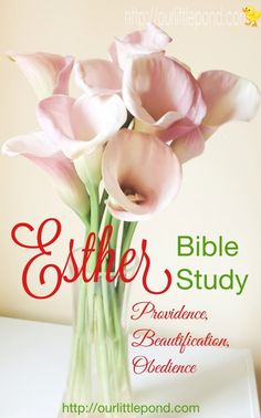 Studying Esther, chapter 2. God's providence, beautification and obedience.