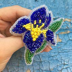 @Regranned from @broshki_ot_margoshki - Опять в коллекцию цветочков . 3 оттенка синего чешского бисера, стеклярус, чешские стеклЯнные бусины. . . Синий и_р_и_с в свободной продаже. 900₽ + доставка. Директ или WatsApp 89094709563 . . . А какой Ваш любимый цветок?! . #брошь #брошка #брошьизбисера #брошьназаказ #ирис #брошьирис #синийирис #брошьвподарок #брошьназаказ #майкопброшь #питерброшь #краснодарброшь #embroidery #brooch #handmade_ru_jewellery #flower #beadedbrooch #ручнаяработа #бр...