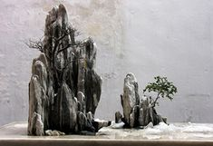 JP: Landscape Penjing(Shanshui Penjing), Rock Mountain.